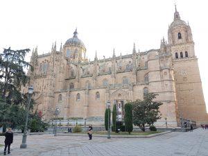 catedral-nueva-salamanca